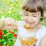 Take-Advantage-of-the-Simplicity-of-Honey-Sticks-To-Boost-Your-Immune-System